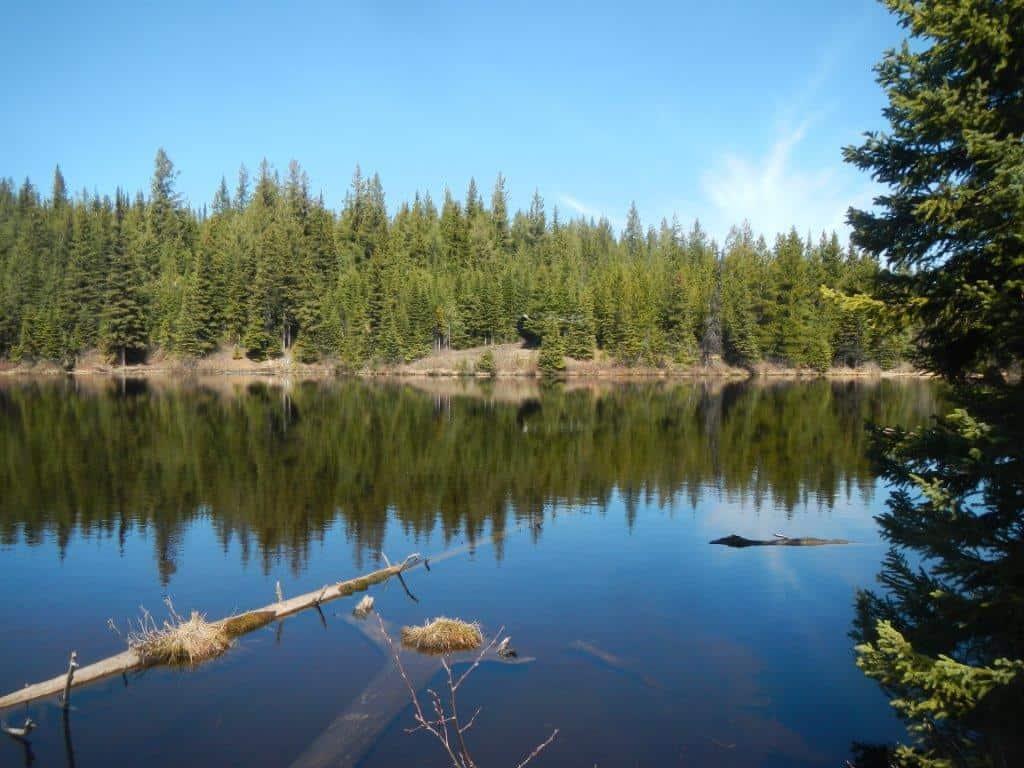 Tabor_Lake